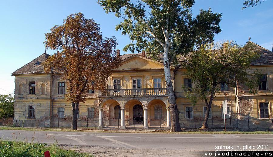 """Românii din Vlaicovăț au înființat Organizația Locală """"Românii Independenți din Serbia"""""""